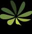 Serendipity_logo_300w