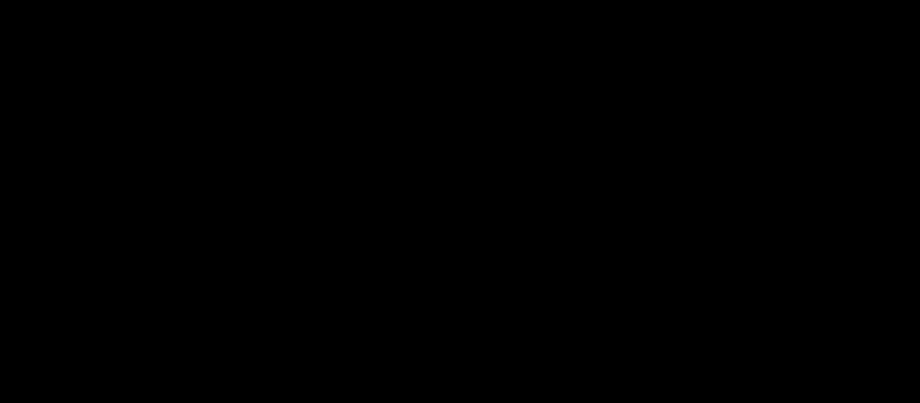 SEB_logo